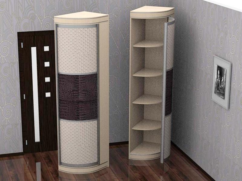 Распашной шкаф Радион угловой элемент ассиметричный