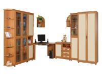 Набор мебели в детскую Дана-4